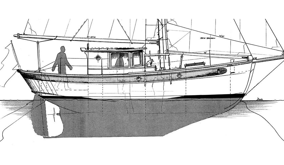 Camarone 34