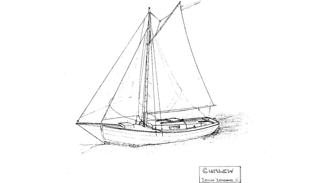 Curlew 24
