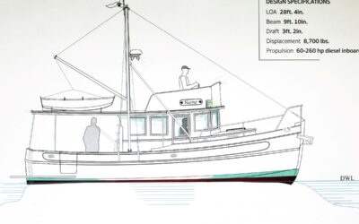 Kingfisher 28